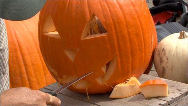 Πώς να φτιάξεις σκαλιστή κολοκύθα για το Halloween!