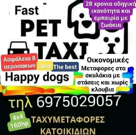 FAST Petaxi 6975029057