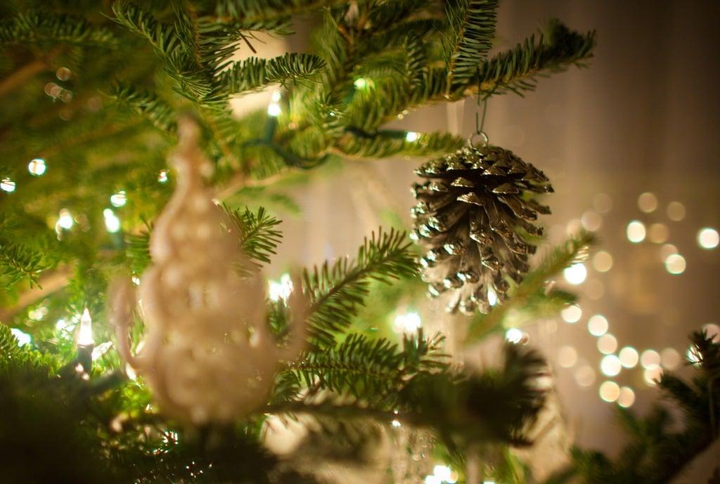 Παρακολουθήστε σε Επανάληψη την Εκδήλωση: όλοι μαζί διαδικτυακά το Χριστουγεννιάτικο δέντρο στον προαύλιο χώρο του Νοσοκομείου Γιαννιτσών (VIDEO)